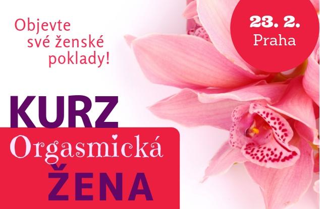 OZ-23-2-2019